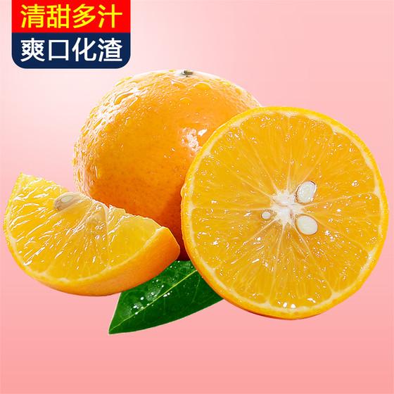 【甘福园旗舰店】     广西武鸣皇帝柑10斤(每个ID限购5件)